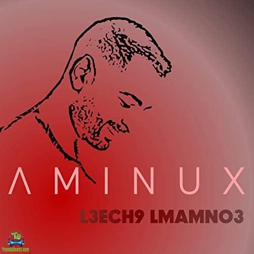 Aminux