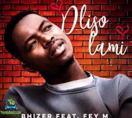 Bhizer - Dliso Lami ft Fey M