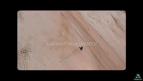 Brymo - Harmattan And Winter (Video)