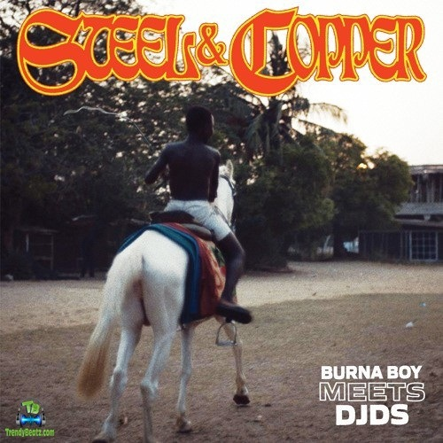 Download Burna Boy Steel And Copper EP mp3