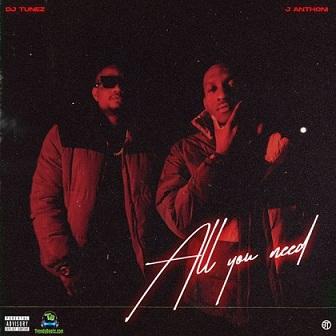 Download DJ Tunez All You Need Album mp3