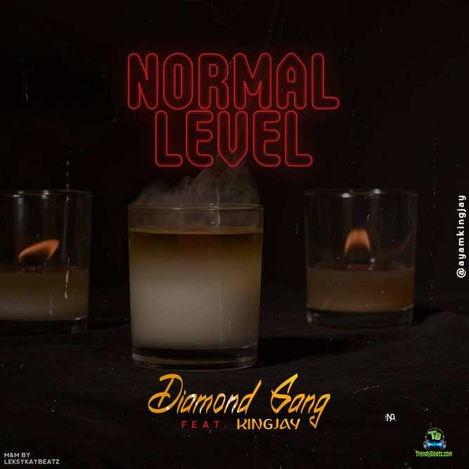 Diamond Gang - Normal Level ft King Jay