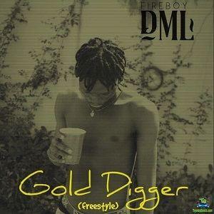 FireBoy DML - Gold Digger