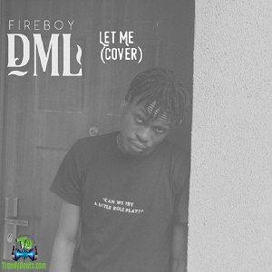 FireBoy DML - Let Me (Cover)