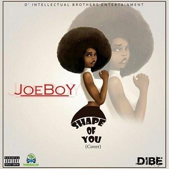 Joe Boy - Shape Of You (Cover)