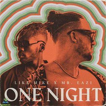 Like Mike - One Night ft Mr Eazi