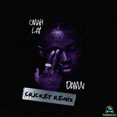 Omah Lay - Damn (Cricket Remix)