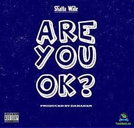 Shatta Wale - Are You Okay? (Are You Okay)