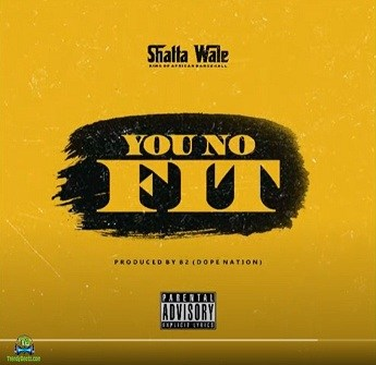 Shatta Wale - You No Fit