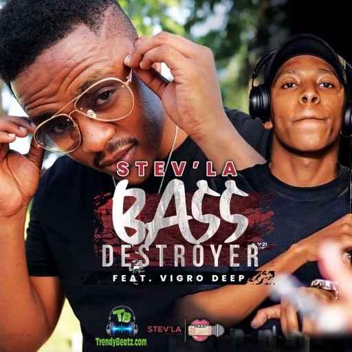 Stev'la - Bass Destroyer ft Vigro Deep