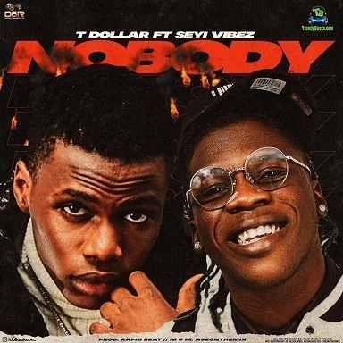 T Dollar - Nobody ft Seyi Vibez