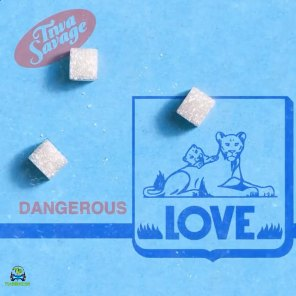 Dangerous Love Video