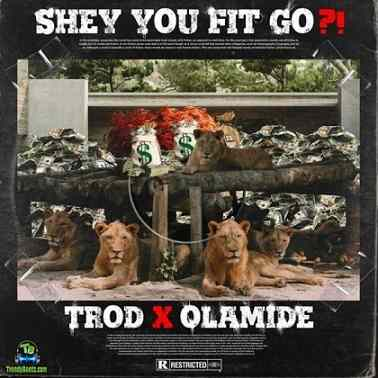 Trod - Shey You Fit Go? ft Olamide